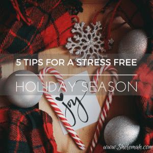 5 Tips for a Stress Free Holiday Season