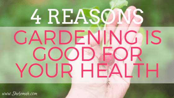 4 Reasons Gardening is Good for Your Health