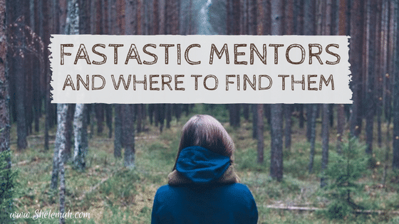 Fantastic Mentors and How to Find Them